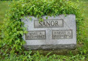 STROUP SANOR, MARY ANN - Columbiana County, Ohio | MARY ANN STROUP SANOR - Ohio Gravestone Photos