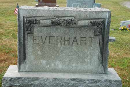 EVERHART, THEODORE - Coshocton County, Ohio | THEODORE EVERHART - Ohio Gravestone Photos