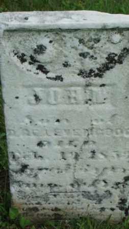 LEVENGOOD, JOHN - Coshocton County, Ohio   JOHN LEVENGOOD - Ohio Gravestone Photos