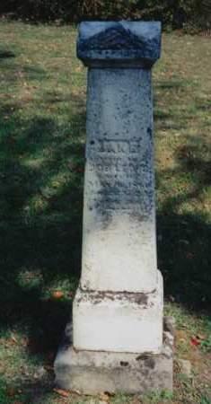 LEWIS, JANE - Coshocton County, Ohio   JANE LEWIS - Ohio Gravestone Photos