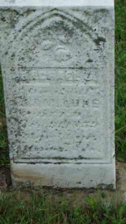LUKE, MICHAEL - Coshocton County, Ohio   MICHAEL LUKE - Ohio Gravestone Photos