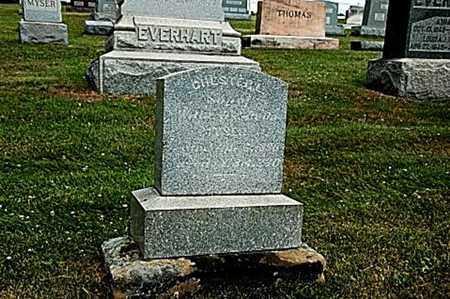 MISER, CHESTER L. - Coshocton County, Ohio | CHESTER L. MISER - Ohio Gravestone Photos