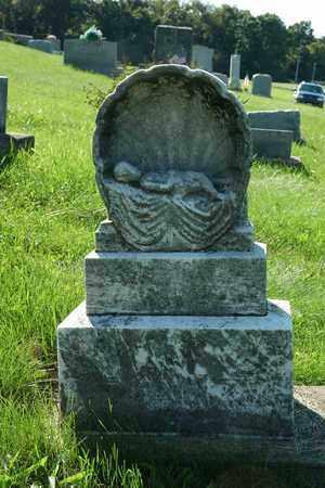 MIZER, GLADYS F. - Coshocton County, Ohio | GLADYS F. MIZER - Ohio Gravestone Photos