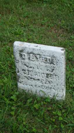 MOYER, DAVID - Coshocton County, Ohio | DAVID MOYER - Ohio Gravestone Photos
