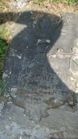 SCHMALZ, GOTTLIEB - Coshocton County, Ohio | GOTTLIEB SCHMALZ - Ohio Gravestone Photos