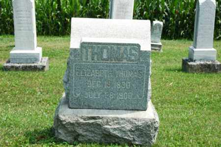 THOMAS, ELIZABETH - Coshocton County, Ohio | ELIZABETH THOMAS - Ohio Gravestone Photos