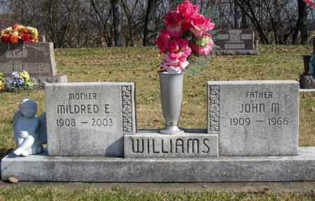 WILLIAMS, JOHN M - Coshocton County, Ohio | JOHN M WILLIAMS - Ohio Gravestone Photos