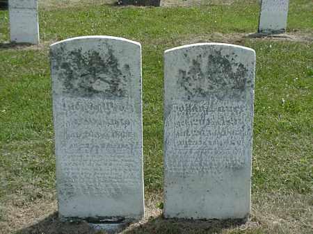 LAUER, JOHAN - Coshocton County, Ohio | JOHAN LAUER - Ohio Gravestone Photos