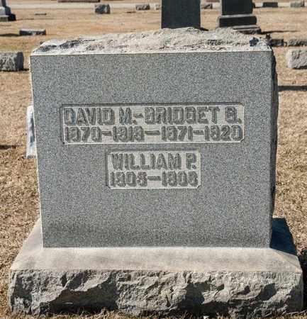 BURKE, DAVID M - Crawford County, Ohio   DAVID M BURKE - Ohio Gravestone Photos
