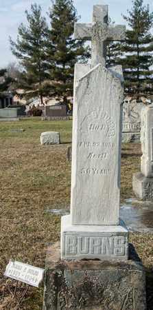 BURNS, JAMES - Crawford County, Ohio | JAMES BURNS - Ohio Gravestone Photos