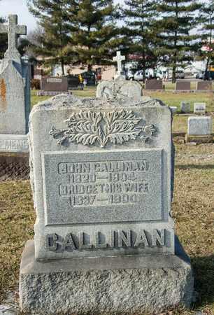 CALLINAN, JOHN - Crawford County, Ohio   JOHN CALLINAN - Ohio Gravestone Photos