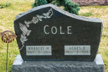 COLE, AGNES R - Crawford County, Ohio | AGNES R COLE - Ohio Gravestone Photos