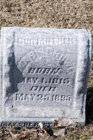 CROWE, MARY - Crawford County, Ohio | MARY CROWE - Ohio Gravestone Photos