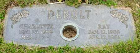 DEBOLT, RAY - Crawford County, Ohio | RAY DEBOLT - Ohio Gravestone Photos
