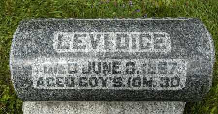 DICE, LEVI - Crawford County, Ohio   LEVI DICE - Ohio Gravestone Photos