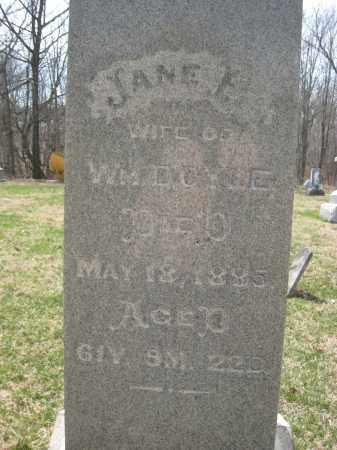 DOYLE, WM - Crawford County, Ohio | WM DOYLE - Ohio Gravestone Photos