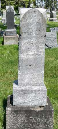 FILSINGER, ALBINA - Crawford County, Ohio | ALBINA FILSINGER - Ohio Gravestone Photos