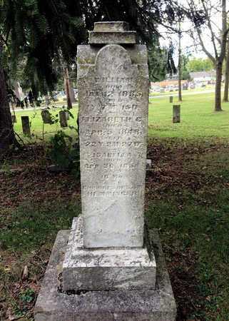 HEMMINGER, ELIZABETH - Crawford County, Ohio | ELIZABETH HEMMINGER - Ohio Gravestone Photos