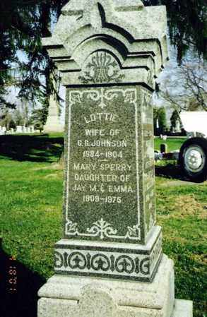 SPERRY JOHNSON, LOTTIE - Crawford County, Ohio | LOTTIE SPERRY JOHNSON - Ohio Gravestone Photos