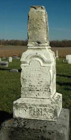 LYONS, ALBERT - Crawford County, Ohio | ALBERT LYONS - Ohio Gravestone Photos
