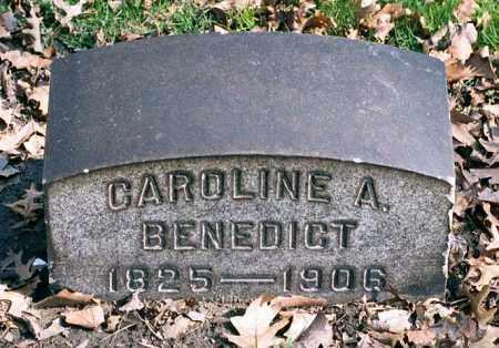 STERLING BENEDICT, CAROLINE AMELIA - Cuyahoga County, Ohio | CAROLINE AMELIA STERLING BENEDICT - Ohio Gravestone Photos