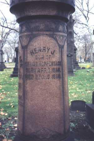 HOPPENSACK, HENRY, J. - Cuyahoga County, Ohio   HENRY, J. HOPPENSACK - Ohio Gravestone Photos