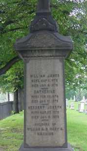 MANNING, CATHERINE - Cuyahoga County, Ohio | CATHERINE MANNING - Ohio Gravestone Photos