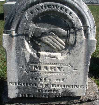 BRINING, MARY - Darke County, Ohio | MARY BRINING - Ohio Gravestone Photos