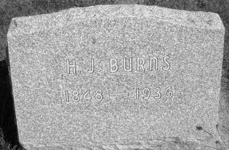 BURNS, H.J. - Darke County, Ohio   H.J. BURNS - Ohio Gravestone Photos