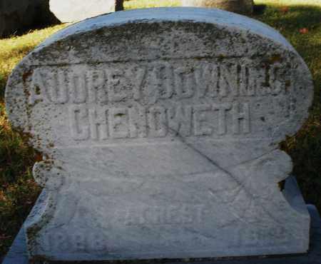 CHENOWETH, AUDREY - Darke County, Ohio | AUDREY CHENOWETH - Ohio Gravestone Photos