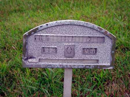 CLARK, JUDY BELLE - Darke County, Ohio | JUDY BELLE CLARK - Ohio Gravestone Photos