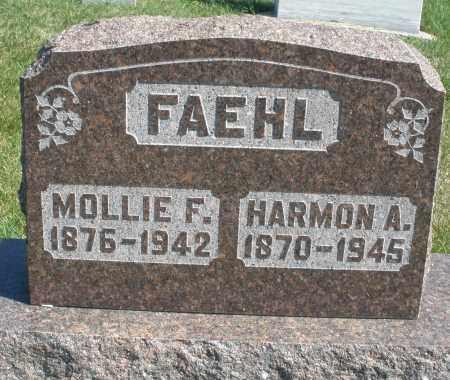 FAEHL, MOLLIE F. - Darke County, Ohio | MOLLIE F. FAEHL - Ohio Gravestone Photos