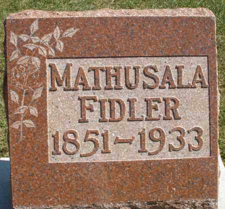 FIDLER, MATHUSALA - Darke County, Ohio | MATHUSALA FIDLER - Ohio Gravestone Photos
