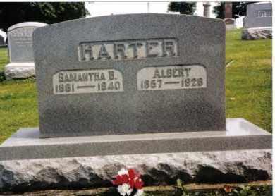 HARTER, SAMANTHA B. - Darke County, Ohio | SAMANTHA B. HARTER - Ohio Gravestone Photos