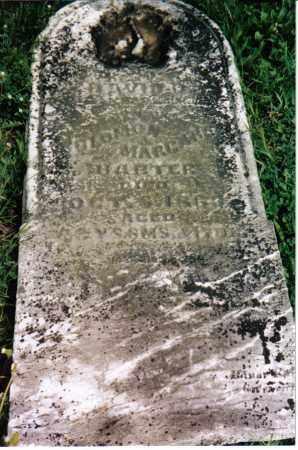 HARTER,, DAVID - Darke County, Ohio | DAVID HARTER, - Ohio Gravestone Photos