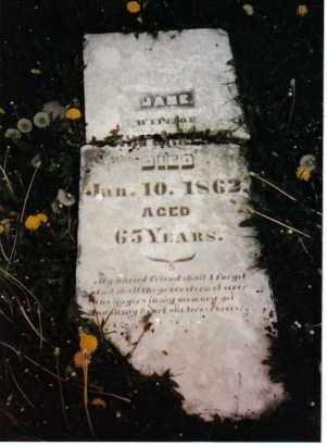 HARTER, JANE - Darke County, Ohio | JANE HARTER - Ohio Gravestone Photos