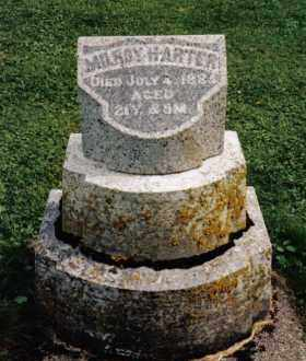 HARTER, MILROY - Darke County, Ohio | MILROY HARTER - Ohio Gravestone Photos
