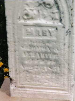 HARTER, MARY - Darke County, Ohio | MARY HARTER - Ohio Gravestone Photos