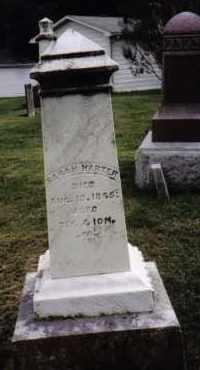 HARTER, SARAH - Darke County, Ohio   SARAH HARTER - Ohio Gravestone Photos