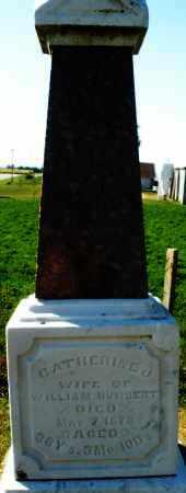 HUMBERT, CATHERINE - Darke County, Ohio | CATHERINE HUMBERT - Ohio Gravestone Photos