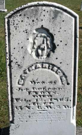 LYONS, CATHARINE - Darke County, Ohio | CATHARINE LYONS - Ohio Gravestone Photos