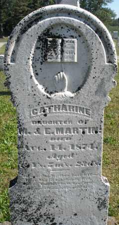 MARTIN, CATHARINE - Darke County, Ohio | CATHARINE MARTIN - Ohio Gravestone Photos