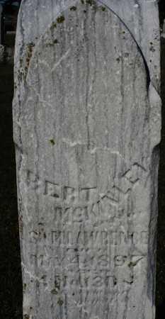 MCKINLEY, BERT - Darke County, Ohio | BERT MCKINLEY - Ohio Gravestone Photos