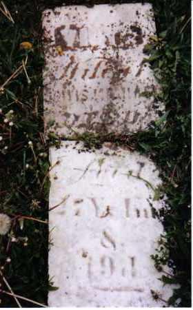 HARTER MICHAEL, VIOLA - Darke County, Ohio | VIOLA HARTER MICHAEL - Ohio Gravestone Photos