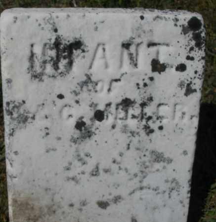 MILLER, INFANT - Darke County, Ohio | INFANT MILLER - Ohio Gravestone Photos