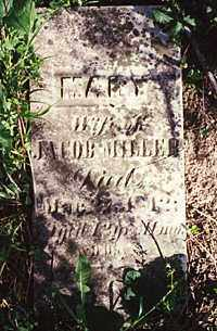 MILLER, MARY - Darke County, Ohio | MARY MILLER - Ohio Gravestone Photos