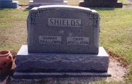 SHIELDS, CALEB - Darke County, Ohio | CALEB SHIELDS - Ohio Gravestone Photos