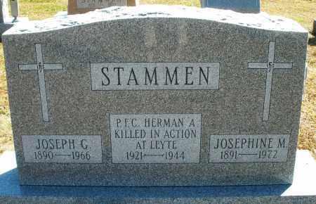 STAMMEN, JOSEPHINE M. - Darke County, Ohio | JOSEPHINE M. STAMMEN - Ohio Gravestone Photos