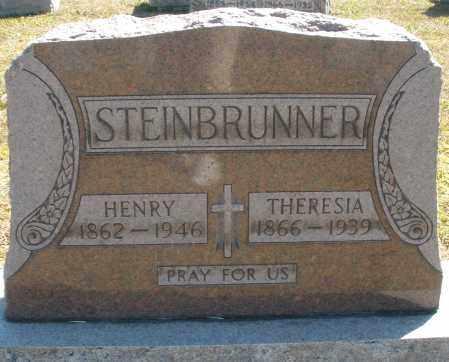 STEINBRUNNER, THERESIA - Darke County, Ohio | THERESIA STEINBRUNNER - Ohio Gravestone Photos