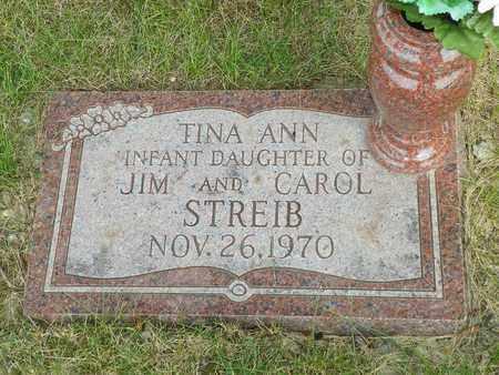 STREIB, TINA ANN - Darke County, Ohio | TINA ANN STREIB - Ohio Gravestone Photos